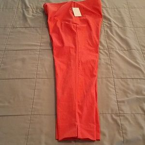 Charter Club Pants - CHARTER CLUB CLASSIC FIT  ANKLE PANT. SIZE 6P